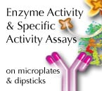 Enzyme Activity Assay