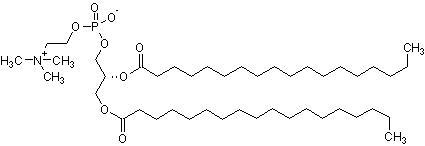 1,2-Distearoyl-sn-glycero-3-phosphorylcholine (DSPC), Phosphorylcholine  (CAS 816-94-4) (ab143948)