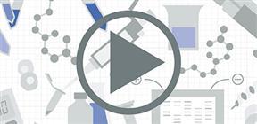 Video protocols