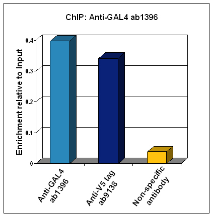 gal4 - chip