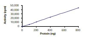 Functional Studies - LOK protein (Tagged) (ab55710)