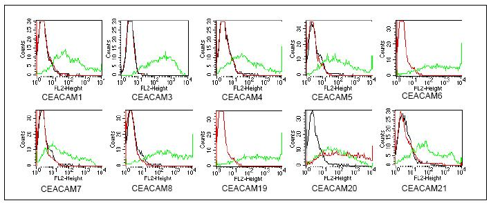 Flow Cytometry - CEACAM20 antibody [HT-12D8] (ab59626)