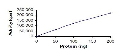 Functional Studies - ITK protein (ab60300)