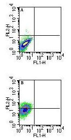 Flow Cytometry - MHC Qa1b antibody [6A8.6F10.1A6] (ab72487)