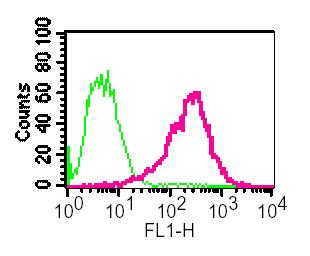 Flow Cytometry - Retinoic Acid Receptor alpha antibody [EP1823Y] (ab76074)