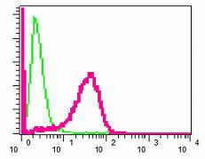 Flow Cytometry - Laminin beta 1 antibody [EPR3190(2)] (ab109293)