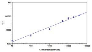 Functional Studies - Cell Viability Assay Kit (Fluorometric - Near InfraRed) (ab112123)