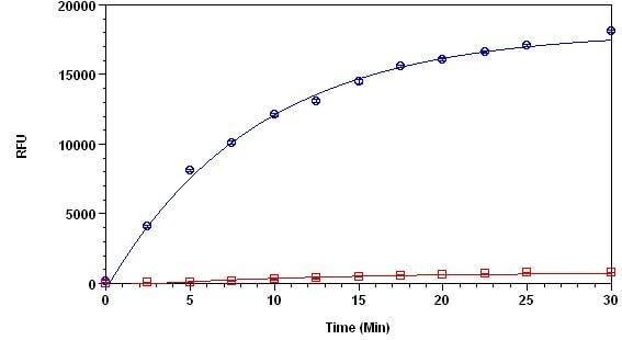 Functional Studies - Protease Activity Assay Kit (Fluorometric - Green) (ab112152)