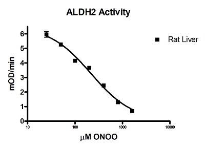 Functional Studies - Mitochondrial Aldehyde Dehydrogenase (ALDH2) Activity Assay Kit (ab115348)