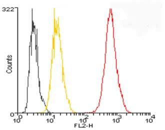 Flow Cytometry - Anti-Ubiquitin antibody (DyLight® 488) (ab115637)