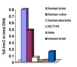 Functional Studies - Hydroxymethylated DNA Quantification Kit (Colorimetric) (ab117130)