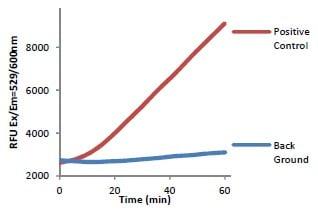 Functional Studies - Lipase Detection Kit III (ab118969)