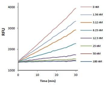 Functional Studies - MMP-1 Inhibitor Screening Kit  (ab118973)