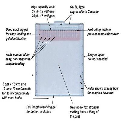 SDS-PAGE-Optiblot SDS Gel 10% (8 x 10cm) - 12 Well(ab119206)