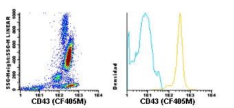 Flow Cytometry - Anti-CD43 antibody [TP1/36] (CF405M) (ab119482)