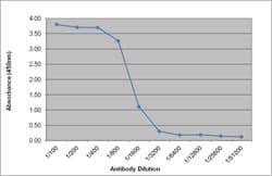 Indirect ELISA - Anti-IgG antibody [R10Z8E9] (ab124055)