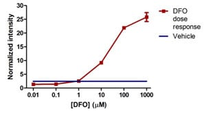 In-Cell ELISA - Hif1 + PDK1 Hypoxia Human In Cell ELISA Kit (ab125299)