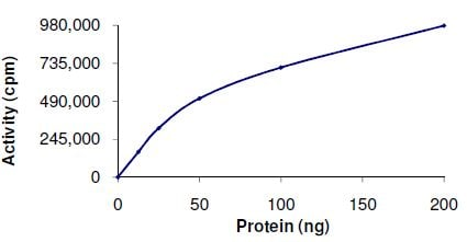 Functional Studies - PIM3 protein (Active) (ab125561)