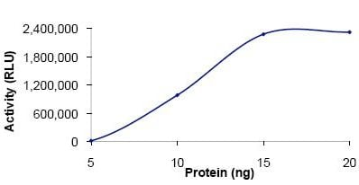 Functional Studies - PDE7A protein (Active) (ab125786)