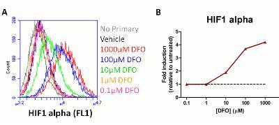 Flow Cytometry - HIF1a + GLUT1 Hypoxia Response Human Flow Cytometry Kit (ab126584)