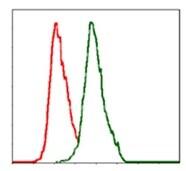 Flow Cytometry - Anti-Alkaline Phosphatase, Tissue Non-Specific antibody [2F4] (ab126820)
