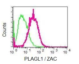 Flow Cytometry - Anti-PLAGL1 / ZAC antibody [EPR7523] (ab129063)