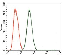 Flow Cytometry - Anti-MELK antibody [2G2] (ab129373)