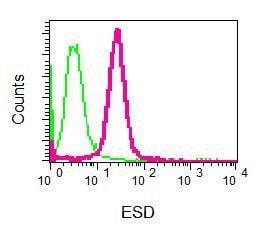 Flow Cytometry - Anti-ESD antibody [EPR8446] (ab131211)