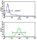 Flow Cytometry - Anti-PCCB antibody (ab135720)