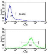 Flow Cytometry - Anti-HuR / ELAVL1 antibody (ab135740)
