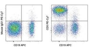 Flow Cytometry - Anti-CD5 antibody [UCHT2] (PE/Cy7 ®) (ab155375)