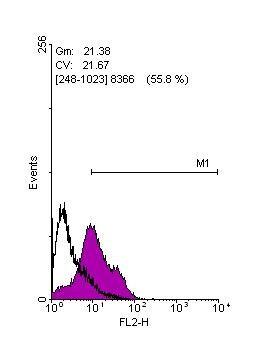 Flow Cytometry - Anti-Lin28A antibody (ab155542)
