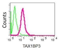 Flow Cytometry - Anti-TAX1BP3 antibody [EPR7900(2)] (ab155992)