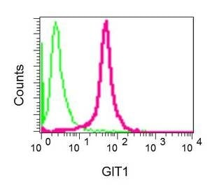 Flow Cytometry - Anti-GIT1 antibody [EPR10367] (ab156001)