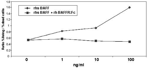 Functional Studies - BAFF Receptor protein (Active) (ab157066)