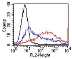 Flow Cytometry - Anti-GPCR GPR48 antibody [BBX-3A8] (ab166659)