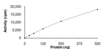 Functional Studies - Axl protein (Active) (ab167950)