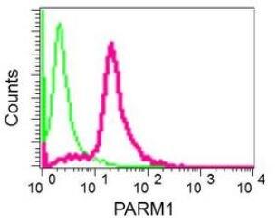 Flow Cytometry - Anti-PARM-1 antibody (ab168369)