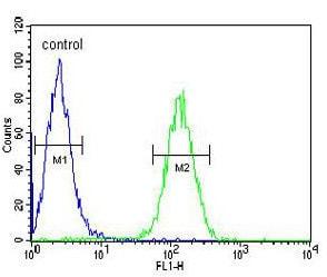 Flow Cytometry - Anti-Axin 2 antibody - C-terminal (ab168826)