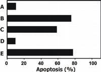 Functional Studies - Anti-TRAIL antibody [2E5] (ab2219)