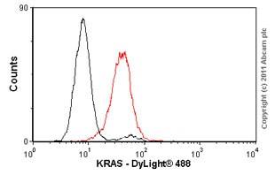 Flow Cytometry - Anti-KRAS+HRAS+NRAS antibody (ab55391)