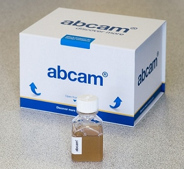 Other - Normal Rabbit Serum (Sterile) (ab7487)