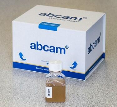 Other-Normal Rat Serum(ab7488)