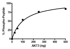 Functional Studies - AKT3 protein (Active) (ab79799)