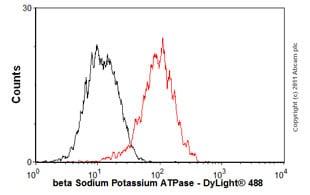 Flow Cytometry - Anti-beta 1 Sodium Potassium ATPase antibody [464.8] (ab8344)