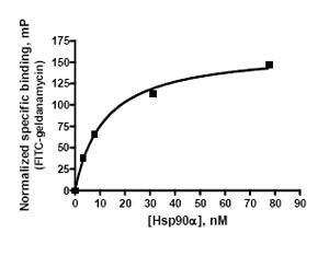 Functional Studies - Hsp90 alpha protein (Active) (ab80369)