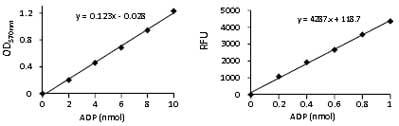Functional Studies - ADP Colorimetric/Fluorometric Assay Kit (ab83359)