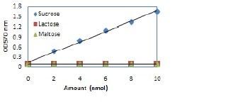 Functional Studies - Sucrose Assay Kit  (ab83387)
