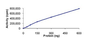 Functional Studies - MSK1 protein (Active) (ab84805)