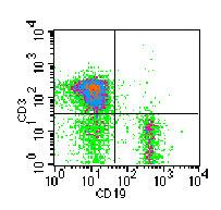 Flow Cytometry - CD19 antibody [1D3] (FITC) (ab86904)